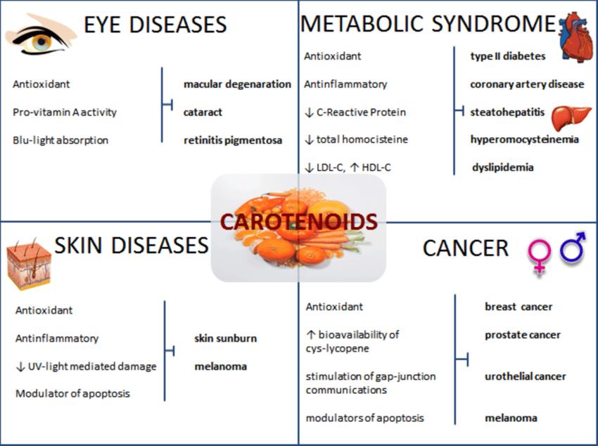 Carotenoids và tác dụng với mắt
