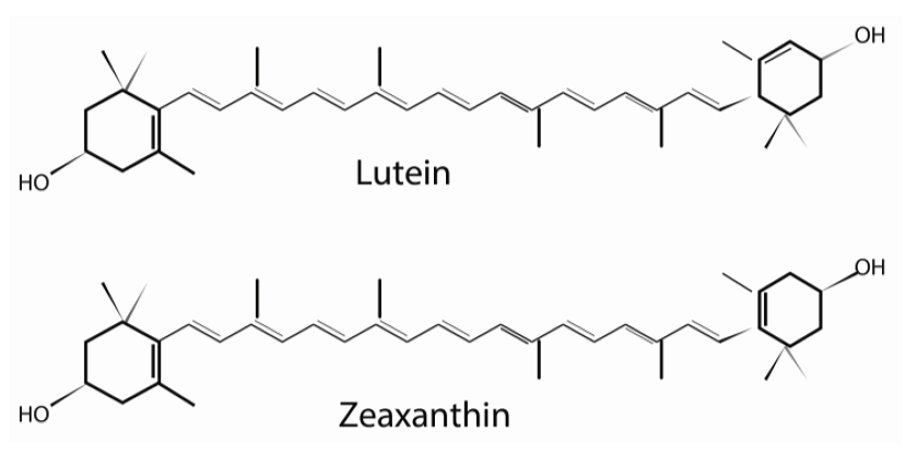 Lutein và zeaxanthin